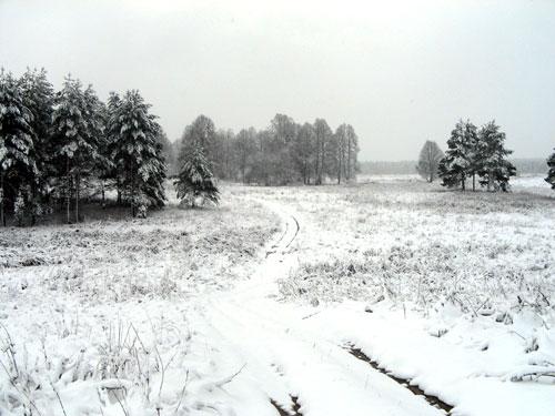 Январь, охота в январе